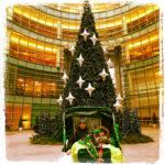 Christmas Lights Pedicab Tour