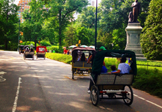 central park pedicab - New York Pedicab Services