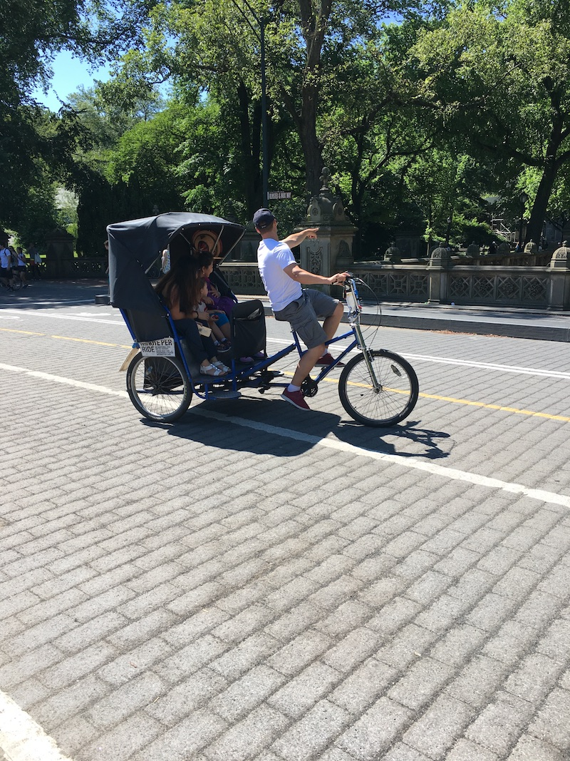 Central Park picnic and pedicab tour